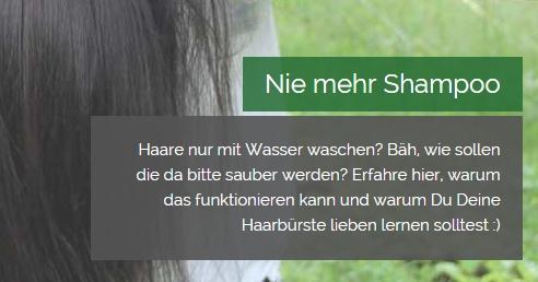 Screenshot: http://experimentselbstversorgung.net/