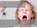 Mädchen hat Angst vor Spinne
