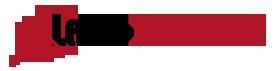 Lead-Motor Logo