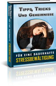 Stressbewältigung E-Book